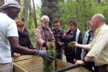 Sud-Hainaut : nouvelle formation de guides composteurs